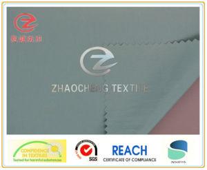 400t N/P Pongee Garment Fabric (ZCGF028)