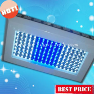120W LED Aquarium Light With 3 Switches or Timer (GL-A-120W)