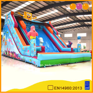 Commercial Use Inflatable Huge Slide for Kids (AQ09193-3) pictures & photos