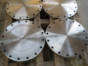 Forging/Forged Flange pictures & photos