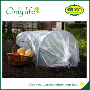 Onlylife BSCI Strong Material PE Garden Protection Grow Tunnel pictures & photos