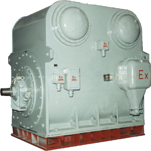 YBKS High-Voltage Explosion-Proof Motor