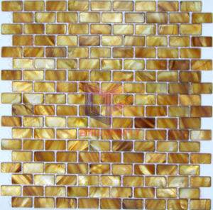 Brown Color Mother of Pearl Shell Mosaic Tile (CFP103) pictures & photos