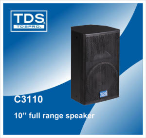 Professional Stage Speaker (C3110) pictures & photos