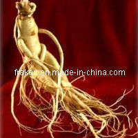 High Quality 4-80% Ginsenosides American Ginseng Root Extract pictures & photos