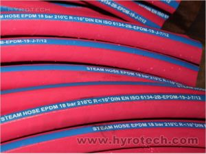 Steel Wire Braided Steam Hose pictures & photos