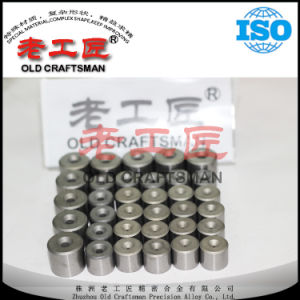 High Quality Cemented Carbide Drawing Die Nibs From China pictures & photos