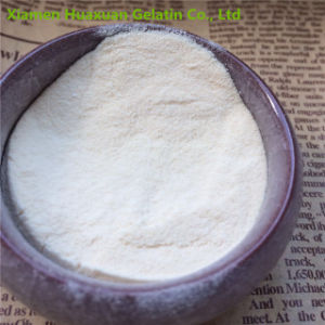 Pharmaceutical Grade Collagen Powder for Medicine pictures & photos