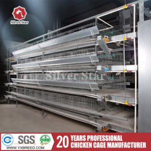 H-Type Hot Galvanized Wire Mesh Chicken Layer Cage for Sale pictures & photos