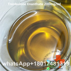 Sell High Purity Trenbolone Acetate Powder Tren Ace 100mg/Ml Tren Acetate pictures & photos