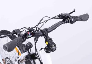High Speed Middle Drive Electric Bike (TDF93L) pictures & photos