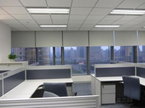 Roller Curtain Quiet Motorized Roller Shade pictures & photos