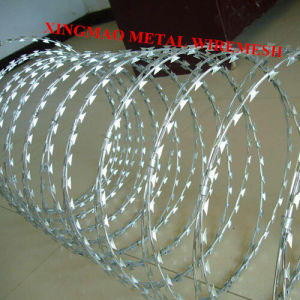 Hot-Dipped Galvanized Bto-22 Razor Blade Wiremesh (XMR3) pictures & photos