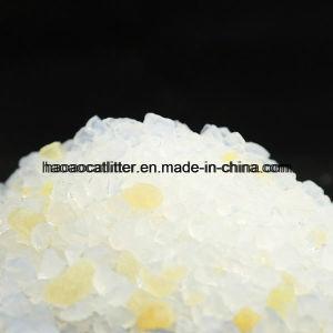 Yellow Clor Slica Gel Cat Sand pictures & photos