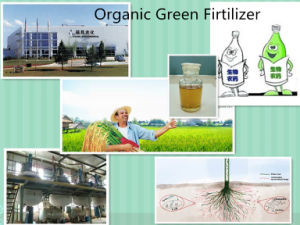 NPK Micronutrients Amino Acid Agriculture Soluble Organic Liquid Lawn Fertilizer pictures & photos