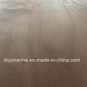 Red Hard Wood Face and Back Poplar Core Plywood 1250*2500mm pictures & photos
