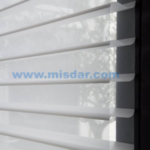 High Quality Low Price Sheer Horizontal Window Shading pictures & photos