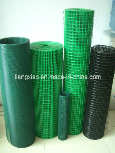 PVC Welded Wire Mesh (HPZS5004) pictures & photos