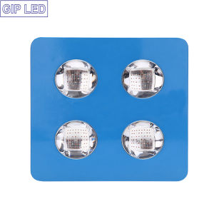 Best 504W 600W LED Grow Lights for Hydro Plant Growth pictures & photos