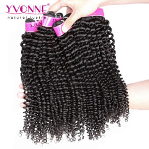 Hot Products 100% Human Hair Brazilian Virgin Hair pictures & photos