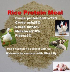 Rice Protein Meal for Feed Additives pictures & photos