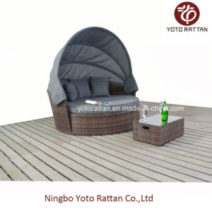 Outdoor Rattan Big Daybed in Brown (1215) pictures & photos