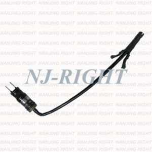 Auto Parts of Delphi Fuel Injector/Injection/Nozzel for Chevrolet (ICD00003) pictures & photos