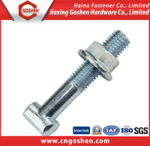 Zinc Plated T Bolt with Flange Nut pictures & photos