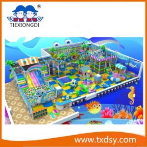 Indoor Playground Equipment for Kids Play pictures & photos