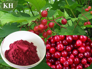 5% ~ 35% Anthocyanins by HPLC Cranberry Extract pictures & photos