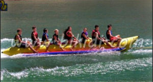 Commercial Grade Inflatable Water Games Flyfish Banana Boat for Sale D3011 pictures & photos
