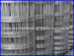 Galvanized Hinge Joint Knot Welded Wire Mesh /Field Wire Mesh pictures & photos