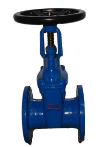 Dn50 Cast Iron Rubber Wedge Non-Rising Stem Gate Valve