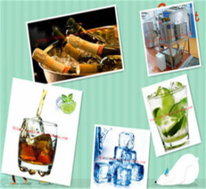 Cube Ice Machine/Commercial Smoothie Machines /Ice Machine for You pictures & photos