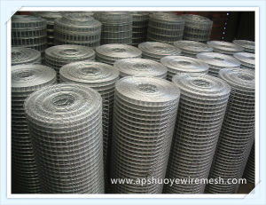 Stainless Steel Galvanized PVC Coated Welded Wire Mesh pictures & photos