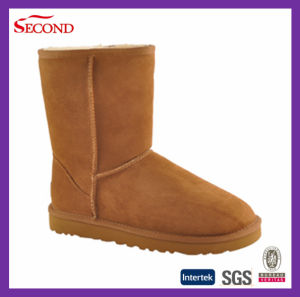 Suede Winter Boots for Women