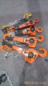 Lifting Chain Block Hoist (WB2) pictures & photos