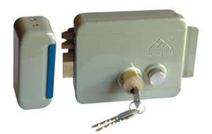 Electric Rim Lock for All Sorts of Access Controller System pictures & photos