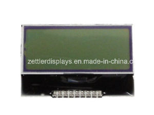 Cog Character LCD Module, Aqm0802A Series Without Backlight pictures & photos