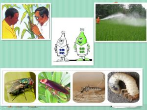 Insectifuge Agrochemicals Pesticide Methomyl Carbamate Insecticide pictures & photos