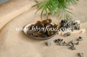 Wild Dried Fresh Black Fungus pictures & photos