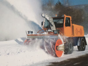 Sf P330 Snow Blower pictures & photos