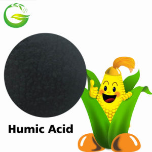 Humic Acid Fertilizer in China Market pictures & photos