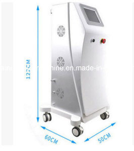 IPL Opt Hair Removal Skin Rejuvenation Wrinkle Removal E-Light for Hair Removal Beauty Machine pictures & photos