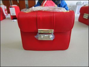Hangbag, Shopping Bag, Bags Quality Inspection pictures & photos