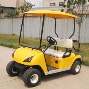 Marshell Manufacturer Supply Electric 2 Passenger Golf Carts (DG-C2) pictures & photos
