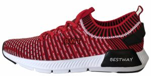Tideway New Design Flyknit Shoes Slip-on Casual Shoes Sports Shoes pictures & photos