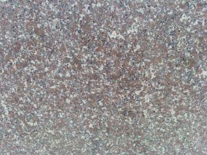 Paving Tile, Chinese Granite Tile, Polished Granite, G648 Granite pictures & photos