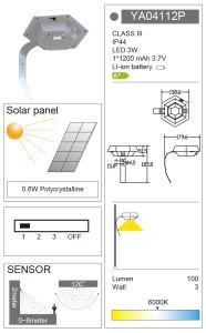 Factory OEM Outdoor Solar LED Plastic Garden Wall Sensor Light pictures & photos