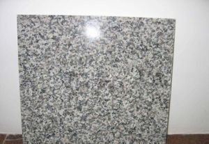 Chinese Polished Cut to Size Granite, G603 Granite Tiles for Kitchen/Floor pictures & photos